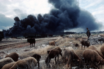 Lethal Legacy. Pollution in the Former U.S.S.R. 1992 - 1994
